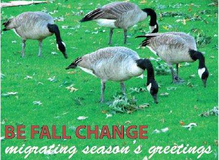 Migrating Season's Greetings!